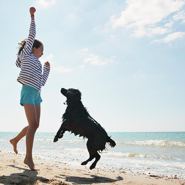 Young woman playing with Dog at the beach