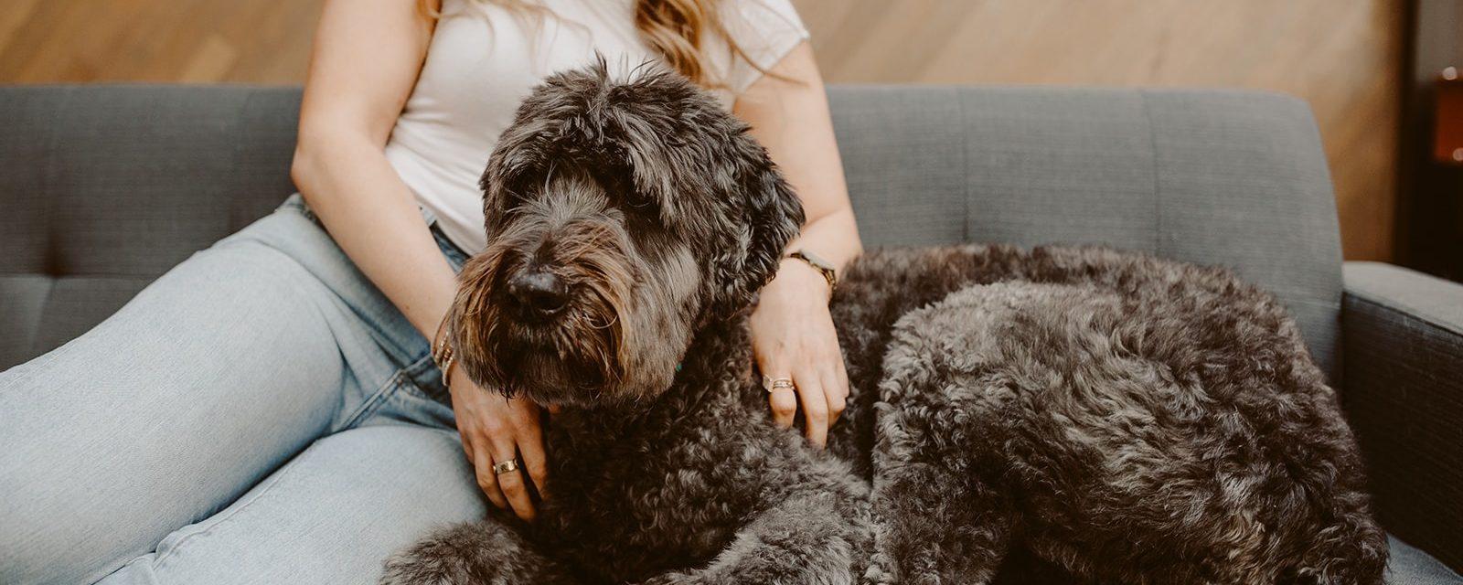 Woman with senior dog